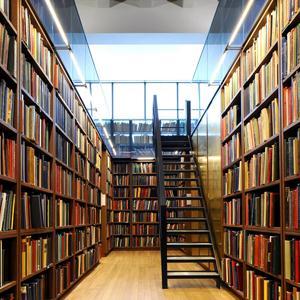 Библиотеки Радищево