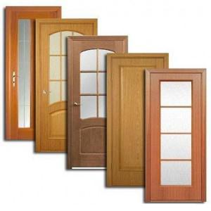 Двери, дверные блоки Радищево
