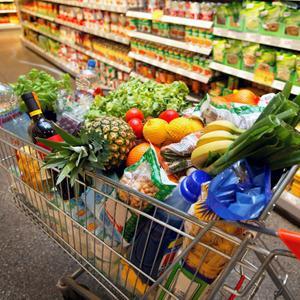 Магазины продуктов Радищево